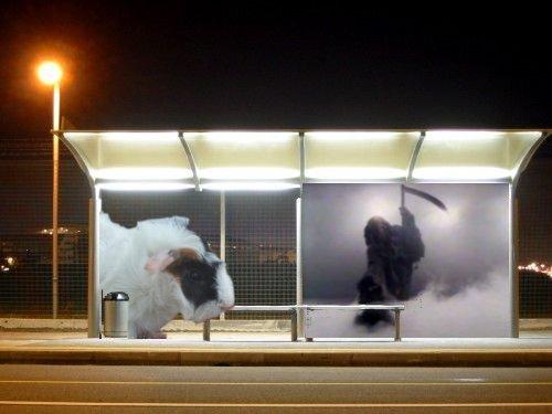 Bus Stop of Death